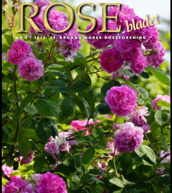 Rosebladet 3/2015