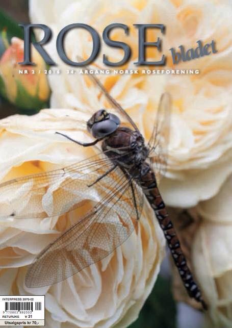 Har du sett det siste Rosebladet – 2/2016?