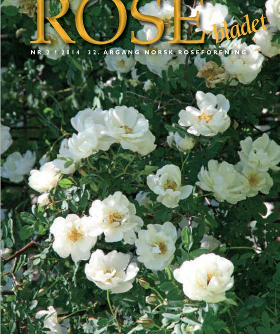 Rosebladet 2/2014