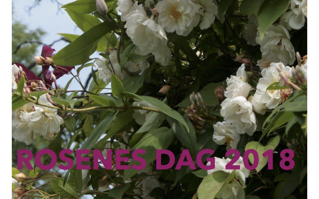 Rosenes dag over hele landet
