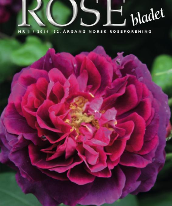 Rosebladet 01 2014