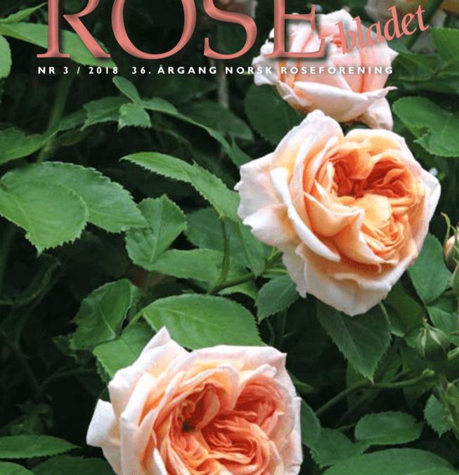 Rosebladet 3/2018
