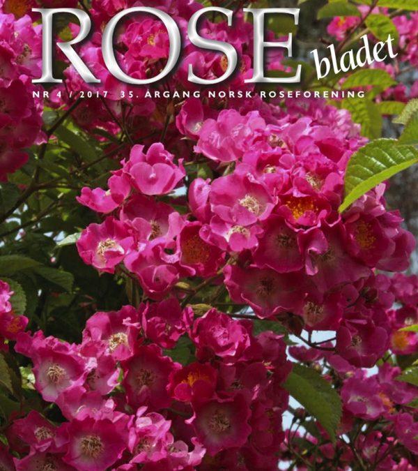 Rosebladet 4/2017