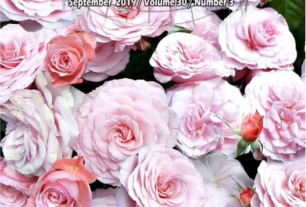 World Rose News September 2019